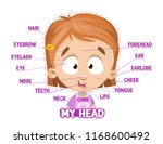 my head parts for a girl.... | Shutterstock .eps vector #1168600492