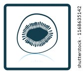 icon of kiwi. shadow reflection ...   Shutterstock .eps vector #1168635142
