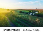 sunny summer landscape with...   Shutterstock . vector #1168674238