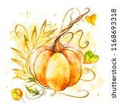 Pumpkin. Hand Drawn Watercolor...