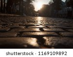 road from paving stones in the ... | Shutterstock . vector #1169109892