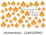 find maple leaf among chestnut...   Shutterstock .eps vector #1169135542