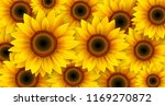 sunflowers background  summer... | Shutterstock .eps vector #1169270872