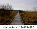 A boardwalk type walkway in the Horicon Marsh going through the wetlands in Wisconsin.