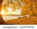 autumn trees near the river ... | Shutterstock . vector #1169476918