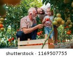grandfather son and grandson... | Shutterstock . vector #1169507755