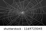 spider web isolated on... | Shutterstock .eps vector #1169725045