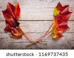 decoration with autumn colored... | Shutterstock . vector #1169737435