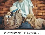 young woman with dog and... | Shutterstock . vector #1169780722