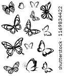 black butterfly  isolated on a... | Shutterstock . vector #1169834422