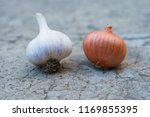 head of garlic and onion lying... | Shutterstock . vector #1169855395
