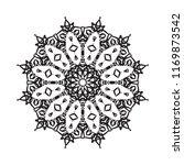 beautiful vector circular...   Shutterstock .eps vector #1169873542