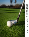 golf equipment | Shutterstock . vector #116993902