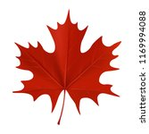 realistic red maple leaf... | Shutterstock .eps vector #1169994088