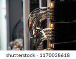 network cables connected in... | Shutterstock . vector #1170028618