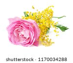 Stock photo pink rose ans mimosa bunch isolated on white background 1170034288