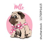 Stock vector adorable beige puppy pug with a bow tie on a pink background hello lettering quote humor card 1170091615
