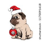 adorable beige puppy pug in a... | Shutterstock .eps vector #1170091618