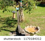 bird feeders and bird bath in... | Shutterstock . vector #1170184312