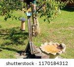 bird feeders and bird bath in... | Shutterstock . vector #1170184312