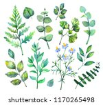 hand drawn watercolor... | Shutterstock . vector #1170265498