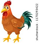 a rooster on white background... | Shutterstock .eps vector #1170293422