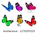 Stock photo beautiful six monarch colorful butterfly isolated on white background 1170295225
