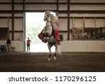 b ton  maine   usa   august 26... | Shutterstock . vector #1170296125