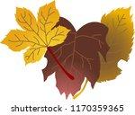 a group of elegant autumn leaves | Shutterstock .eps vector #1170359365
