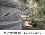 fishing net. close up. macro.... | Shutterstock . vector #1170361642