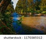 beautiful fast river   Shutterstock . vector #1170385312