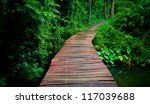 Walkway Through The Treetops In ...