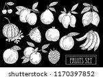 hand drawn decorative fruits...   Shutterstock .eps vector #1170397852