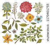 flowers  leaves  herbs  branch. ...   Shutterstock .eps vector #1170401755