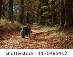 Stock photo young beautiful girl playing with a dog in the park autumn sunny day 1170465412
