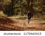 Stock photo young beautiful girl playing with a dog in the park autumn sunny day 1170465415