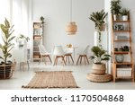 rug and plants in natural... | Shutterstock . vector #1170504868