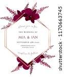 burgundy red astilbe  marsala... | Shutterstock .eps vector #1170663745