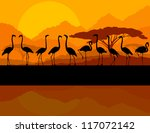 Flamingo vector background and sunset - stock vector