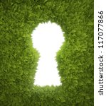 Green Hedge Opening Shaped Lik...