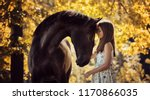 Stock photo beautiful girl with her andalusian horse and beautiful warm sunset in the autumn forest 1170866035