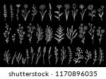 set of hand drawn flowers and... | Shutterstock .eps vector #1170896035