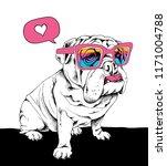 white puppy bulldog in a... | Shutterstock .eps vector #1171004788