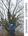 hessay  york  uk  january 14th... | Shutterstock . vector #1171083952