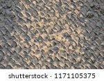 gray tiles outdoor urban land ...   Shutterstock . vector #1171105375