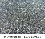 the very clear and transparent... | Shutterstock . vector #1171129618