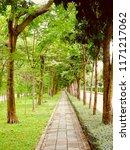 park walkway tree tunnel.... | Shutterstock . vector #1171217062