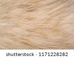 texture background  pattern.... | Shutterstock . vector #1171228282