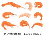 flat vector set of whole and... | Shutterstock .eps vector #1171345378