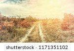 Vintage autumn landscape with...